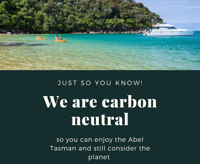 Abel Tasman Charters offsets its carbon footprint by tree planting