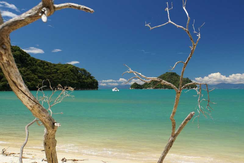 The Abel Tasman views