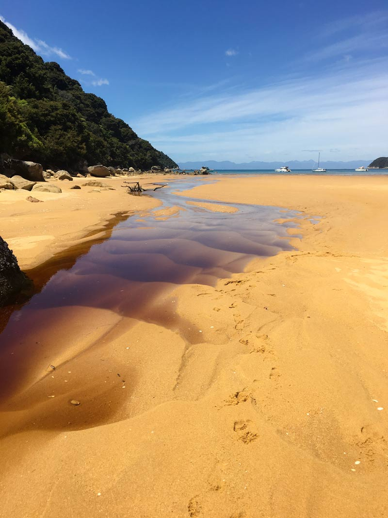 The golden beaches of the Abel Tasman