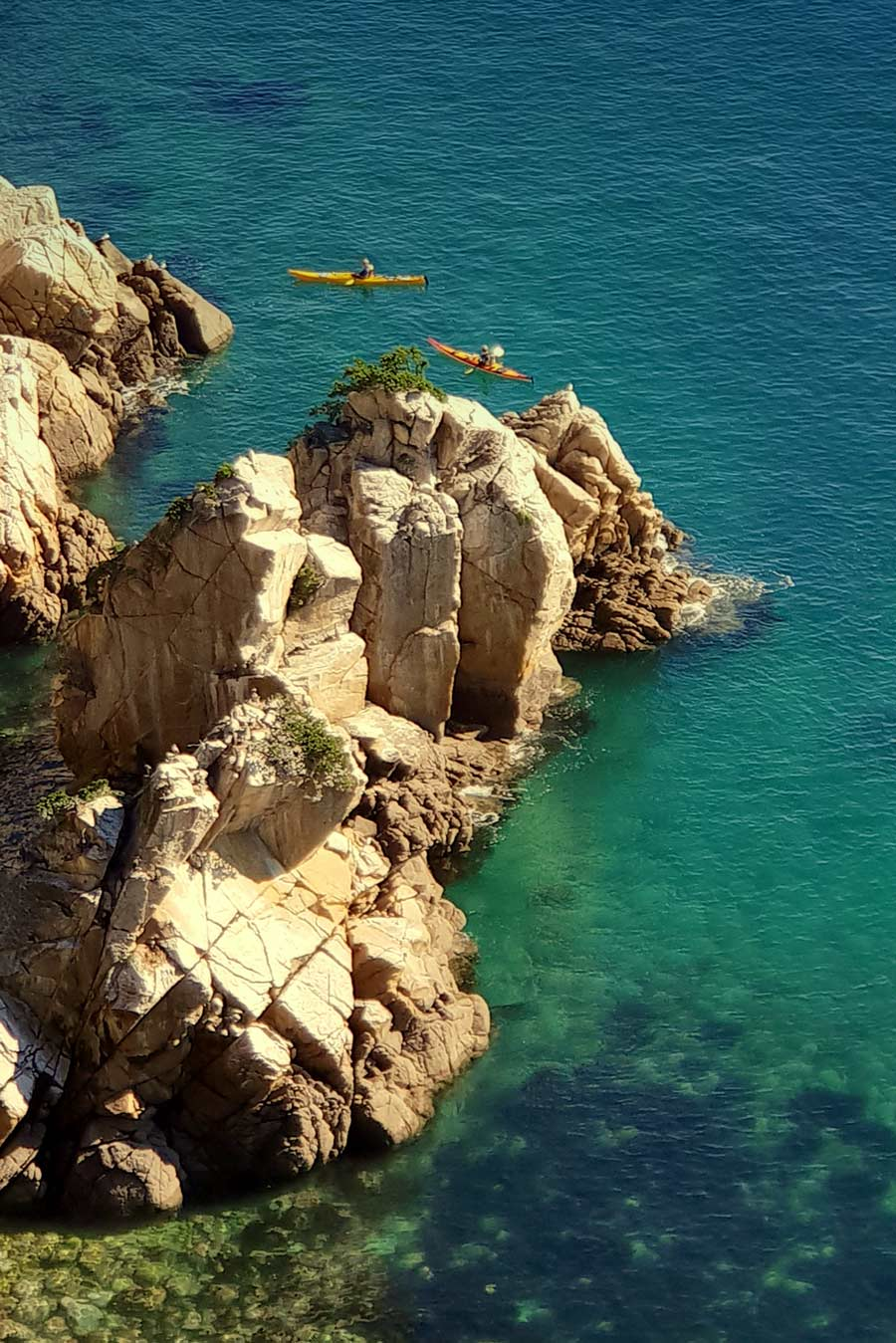 Enjoy a kayak during your Abel Tasman cruise