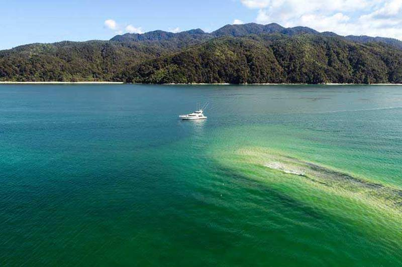 Come and explore New Zealand's Abel Tasman with us.